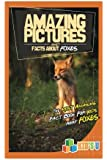 Amazing Pictures and Facts About Foxes: The Most Amazing Fact Book for Kids About Foxes