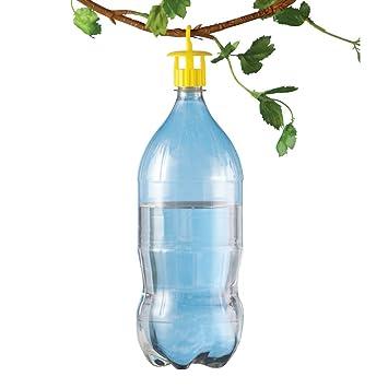 Botella insectos trampas - Juego de 6: Amazon.es: Jardín