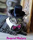 Pampered Whiskers The Aristocrat Top Hat (Hat Only) (black ribbon)