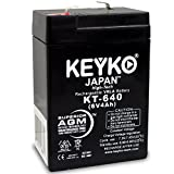 Carpenter Watchman 713527 6V 4Ah Battery Fresh & REAL 4.0 Amp AGM/SLA Sealed Lead Acid Rechargeable Replacement Genuine KEYKO - F1 Terminal