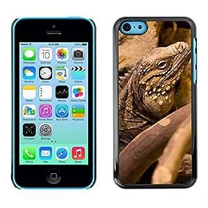 GoGoMobile Slim Protector Hard Shell Cover Case // M00119088 Animal Creature Detail Dragon Iguana // Apple iPhone 5C