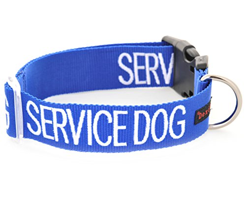 SERVICE DOG Blue Color Coded S-M L-XL Buckle Dog Collar (Do Not Disturb) PREVENTS Accidents By Warning Others of Your Dog in Advance (L-XL Collar 15-25