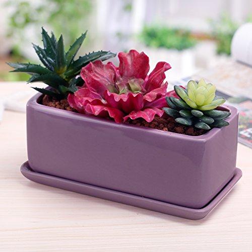 10 Inch Rectangular Modern Minimalist Ceramic Succulent