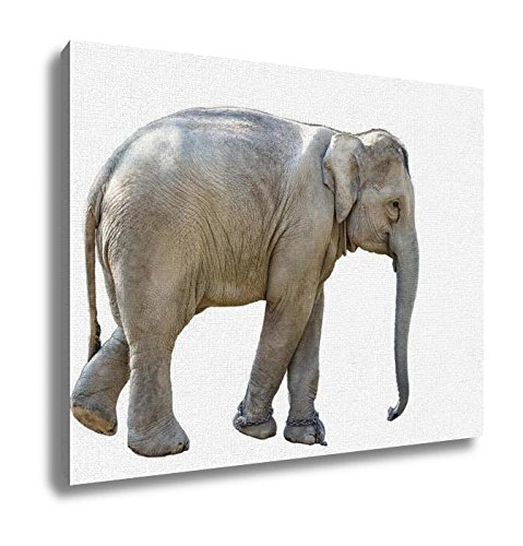 Ashley Canvas, Elephant, Home Decoration Office, Ready to Hang, 20x25, AG5257042 by Ashley Canvas