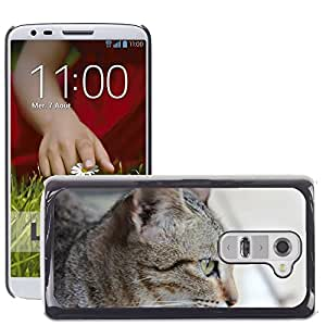 Hot Style Cell Phone PC Hard Case Cover // M00130284 Animal Cat Photograph Pet Cute // LG G2 D800 D802 D802TA D803 VS980 LS980