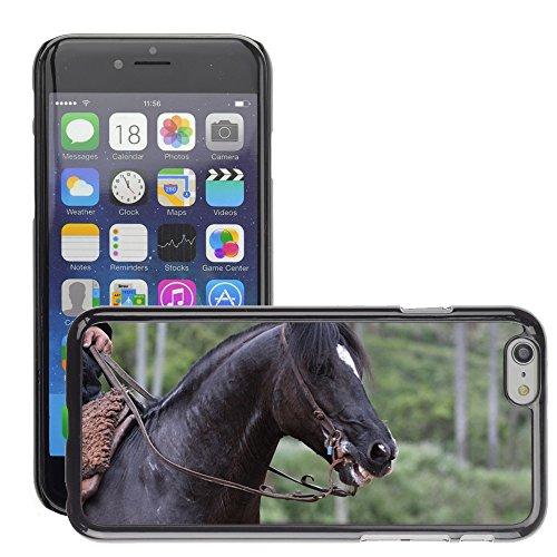 "Bild Hart Handy Schwarz Schutz Case Cover Schale Etui // M00135379 Pferd Ritter Tiergroß // Apple iPhone 6 PLUS 5.5"""