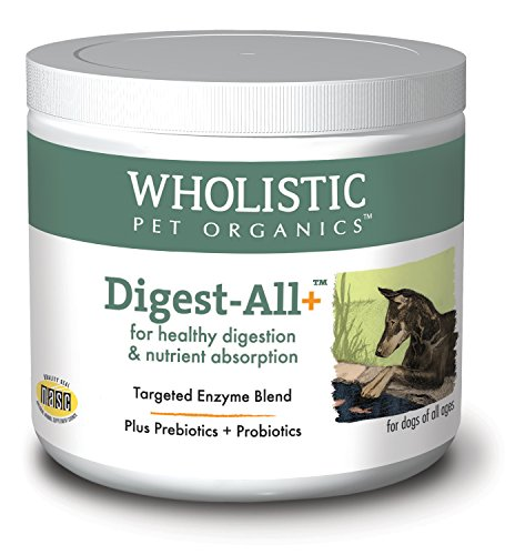 Wholistic Digest All Plus 4 oz