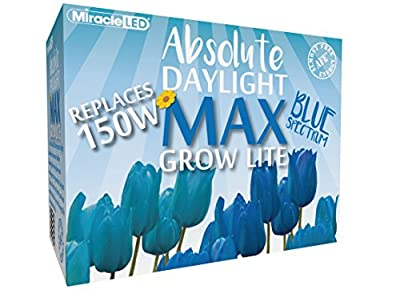MiracleLED 604449 Blue Spectrum LED Grow Lightbulb
