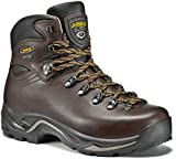 Asolo Men's  TPS 520 GV Boot, Chestnut - 9 B(M) US