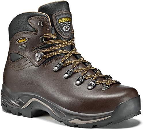 Asolo Women's TPS 520 GV EVO Chestnut Boot 7 D (M)