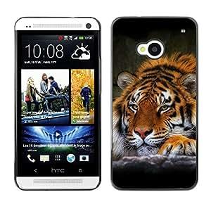 Be Good Phone Accessory // Dura Cáscara cubierta Protectora Caso Carcasa Funda de Protección para HTC One M7 // Tiger Sleepy Feline Animal African Powerful