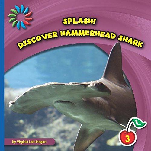 Discover Hammerhead Shark (Splash!)