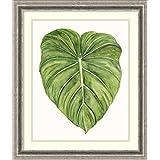 Framed Art Print 'Tropical Breeze Leaves II' by Naomi McCavitt