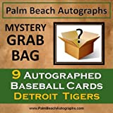 MYSTERY GRAB BAG - 9 Autographed Baseball Cards - Detroit Tigers
