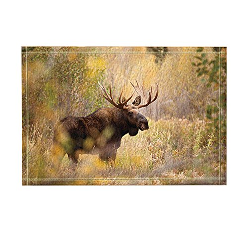 KOTOM Wild Creature Decor, Wild Animal Moose Standing in Forest Bath Rugs, Non-Slip Doormat Floor Entryways Indoor Front Door Mat, Kids Bath Mat, 15.7x23.6in, Bathroom Accessories - Moose Bath Rug