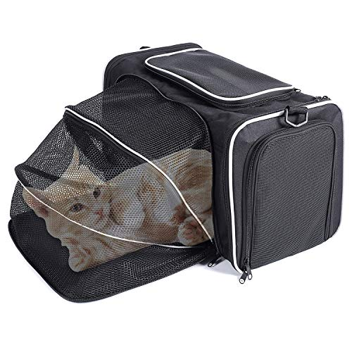 (Pet Carrier for Dogs & Cats, Portable Soft-Sided Air Travel Bag, Airline Approved Pet Carrier for Easy Carry on Luggage,Best for Small Dog and Cat up to 7 LBS (16