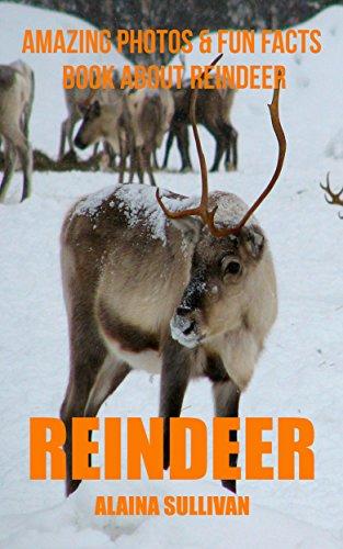 (Reindeer: Amazing Photos & Fun Facts Book about Reindeer)