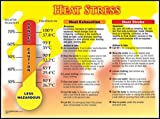 "Accuform Signs PST728 Safety Awareness Poster, ""HEAT STRESS"", 18"" Length x 24"" Width"
