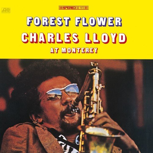 Forest Flower: Live in Monterey - Charles - Lloyd Store