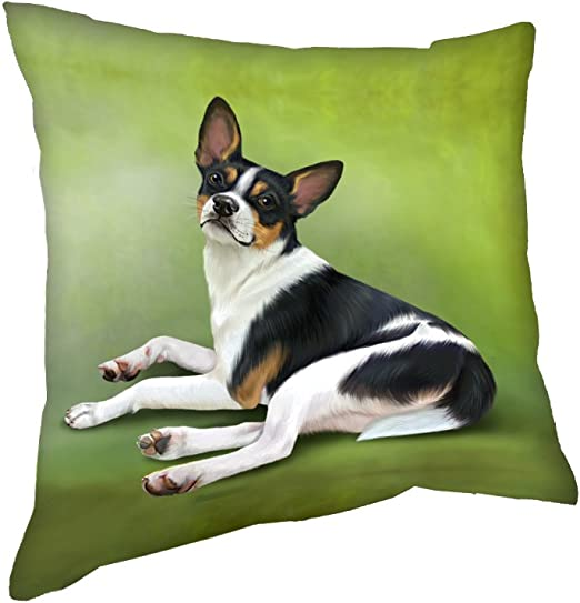 Amazon Com Doggie Of The Day Rat Terrier Throw Pillow 14x14 Home Kitchen