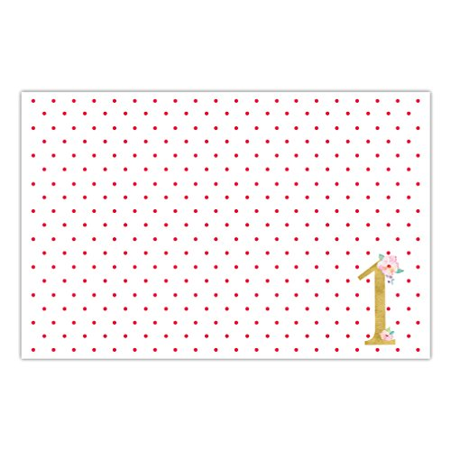 DB Party Studio Paper Placemats Pack of 25 Sweet Baby Girl First 1st Birthday Celebration Disposable Table Place Mats One Year Old Daughter Children Parties Little Kids Place Setting Decor (Old Placemat)