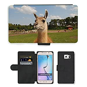 Hot Style Cell Phone Card Slot PU Leather Wallet Case // M00113248 Llama Lama Fur Animal Wildlife Wild // Samsung Galaxy S6 (Not Fits S6 EDGE)