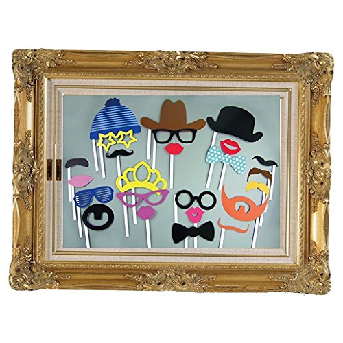 Fengirl 24 Piece Birthday Party Photo Booth Props and frames