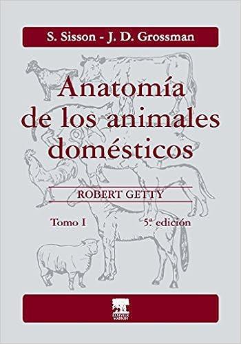 Anatomía de los animales domésticos. Tomo I: S. Sisson: Amazon.com ...