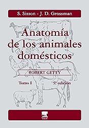 Anatomia de Los Animales Domesticos - Tomo I