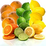 Fresh Sunshine Citrus Trio Oranges, Limes, and Lemons From Organic Mountain (18 Fruit, 6 of Each)