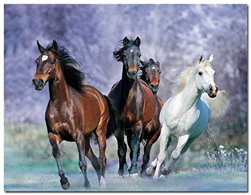 Tomorrow sunny Horse Running Art Silk Poster Pictures For Wa