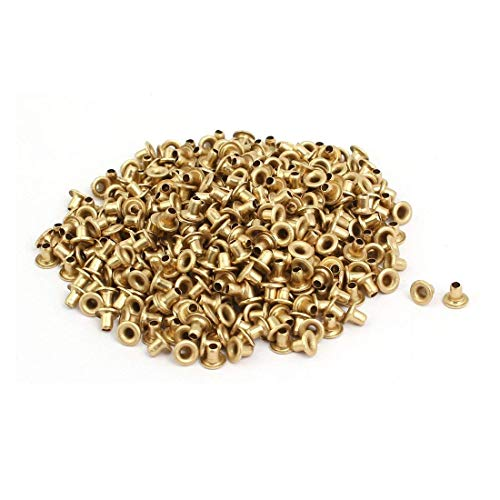 M2 Brass Plated Metal Hollow Eyelets Rivets Gold Tone for Sewing Crafts Handmade Clothes DIY (M2 X ()