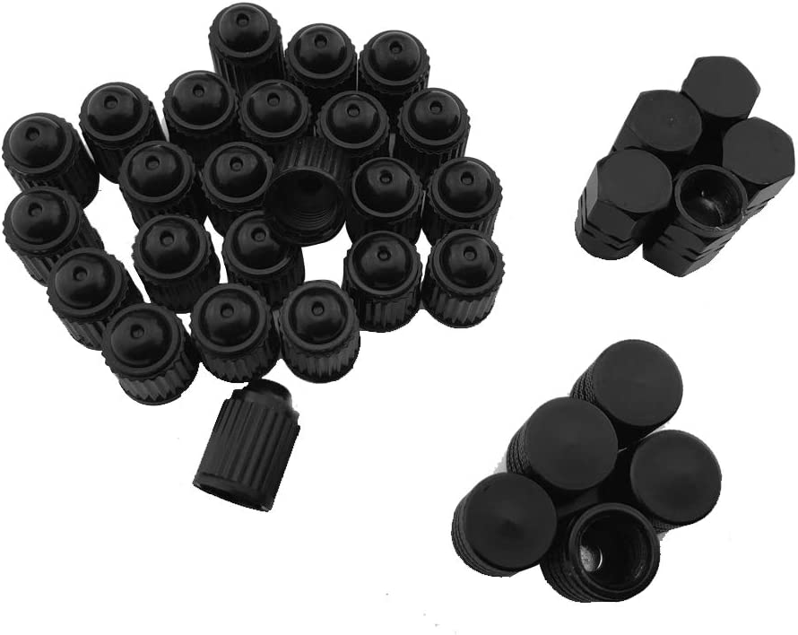 2 Pcs Dual Single Head Valve Core Remover Tool,10 Pcs Schrader Valve Core,10 Pcs Tire Valve Stem Caps Tyre Valve Stem Puller Tools Set with 10 Pcs TR412 Snap-in Valve Stems with Valve Stem Cores