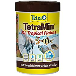 TetraMin Large Tropical Flakes For Top/Mid Feeders, 5.65-Ounce