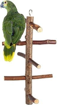 Migliori 7 Trespoli e posatoi per uccelli