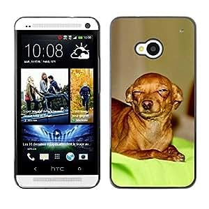 Be Good Phone Accessory // Dura Cáscara cubierta Protectora Caso Carcasa Funda de Protección para HTC One M7 // Skeptical Chihuahua Canine Pet Canine