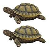 Design Toscano The Box Turtle Statue (Set of 2)