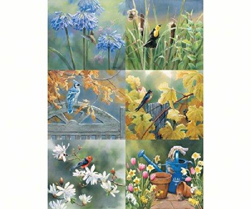 Hi-Look Inc. HL24036C Susan Bourdet Birds & Flowers II (Assorted) Microfiber Cloths
