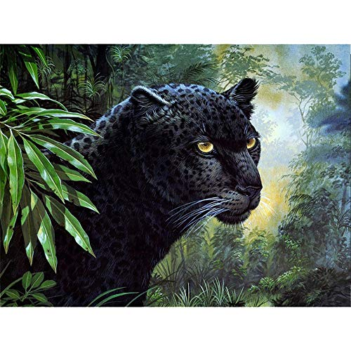 (5D DIY Diamond Painting Kits(11.8x15.7inch)-Angle Hand DP0005 (2019 New Design) Full Drill Black Leopard Resin Rhinestone Embroidery Cross Stitch Arts Craft, 1000+ Instagram Likes )