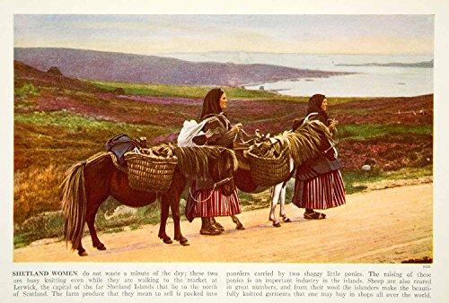 [1938 Color Print Shetland Pony Traditional Costume Fashion Historical View XGGD4 - Original Color] (Shetland Pony Costumes)