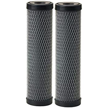 Compatible with Omnifilter T01-DS Omni TO1-DS Whole House Replacement Under Sink Water Filter Carbon Wrapped Cartridge (2-Pack) Taste & Odor TO1 DS T01 DS Series C (Twin Pack) Water Filter BY CFS