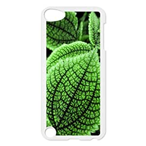 For Iphone 6 Plus Phone Case Cover Excellent Leafy Hard Shell Back White For Iphone 6 Plus Phone Case Cover 305411