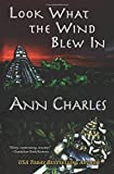 Look What the Wind Blew In (A Dig Site Mystery) (Volume 1)