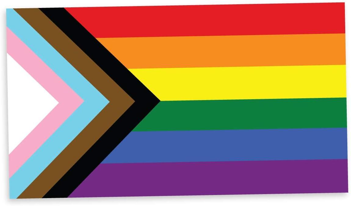 Applicable Pun Progress Pride Flag LGBTQ POC Transgender Flag - Vinyl Decal Sticker 5 inch