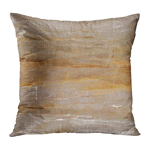 (TOMKEYS Throw Pillow Cover Brown Tone Light Earth Color Orange Sepia Abstract Decorative Pillow Case Home Decor Square 20x20 Inches Pillowcase)