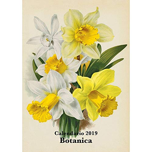 2019 Botanica Sm 2019 Wall Calendar, by Istituto Fotocromo ()