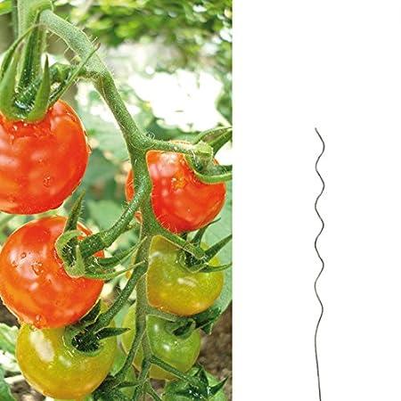 Postes en espiral para tomateras, longitud de 110 cm, acero ...