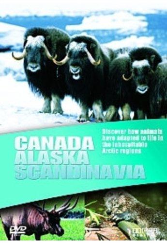 Wildlife - Canada/Alaska/Scandinavia (Wild Canada Dvd)