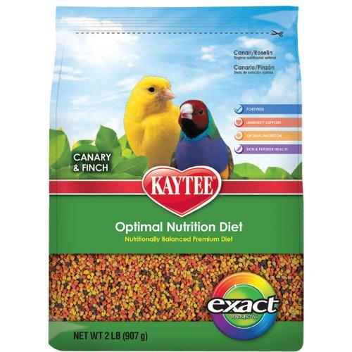 Kaytee Exact Rainbow Canary/Finch Food, 2-Pound, My Pet Supplies