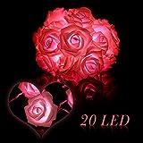 #3: KINGSO 20 LED Battery Operated Rose Flower String Lights Wedding Garden Christmas Decor (Pink)